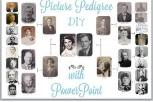 DIY Picture Pedigree Chart