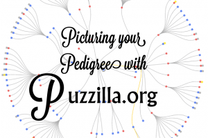 Picturing your Pedigree with Puzzilla.org