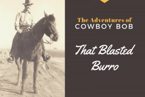 The Adventures of Cowboy Bob: That Blasted Burro