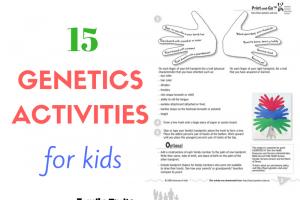 15 Genetics Activities for Kids