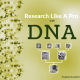 Research Like a Pro with DNA