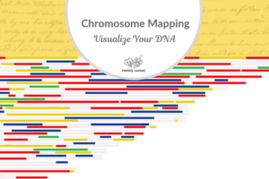 Chromosome Mapping – Visualize Your DNA and Identify the Ancestors Who Passed It On To You