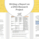 Writing a Research Report on a DNA Research Project