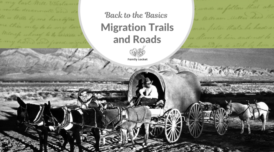 Back to the Basics: Migration Trails and Roads