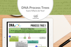DNA Process Trees – Learn What to Do Next