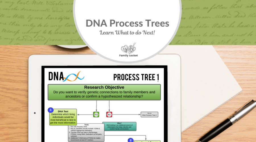 DNA Process Trees – Learn What to Do Next!