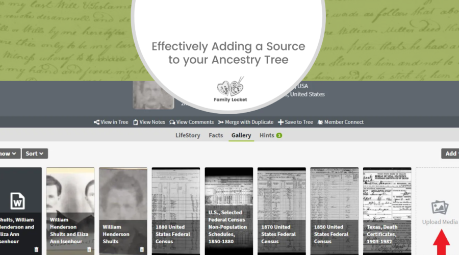Effectively Adding a Source to your Ancestry Tree