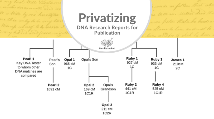 Privatizing DNA Research Reports for Publication