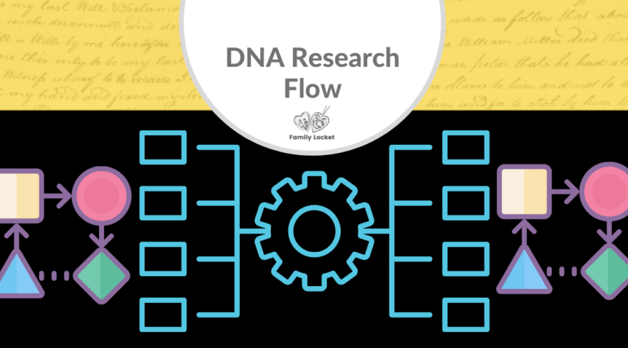 DNA Research Flow