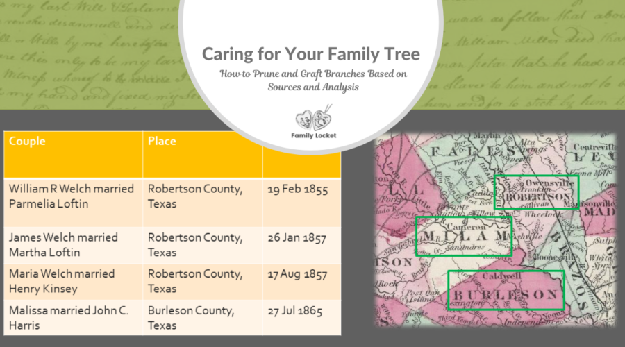 Caring for Your Family Tree: How to Prune and Graft Branches Based on Sources and Analysis
