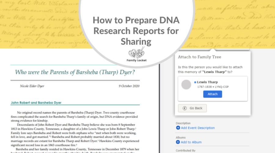 How to Prepare DNA Research Reports for Sharing