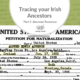Tracing Your Irish Ancestors Part 2: American Resources