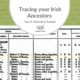 Tracing Your Irish Ancestors Part 4: Records in Ireland