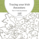 Tracing Your Irish Ancestors Part 5: Irish Jurisdictions and Finding Your Ancestral Home