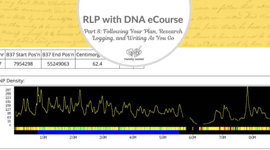 RLP DNA e-course Part 8: Following Your Plan, Research Logging, and Writing As You Go