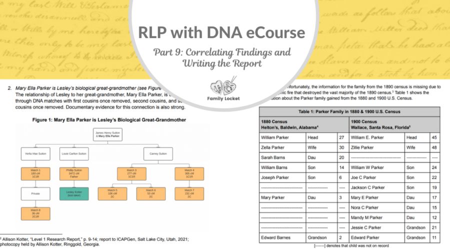 RLP DNA e-course Part 9: Correlating Findings and Writing the Report