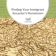 A Comprehensive Guide to Finding Your Immigrant Ancestor's Hometown